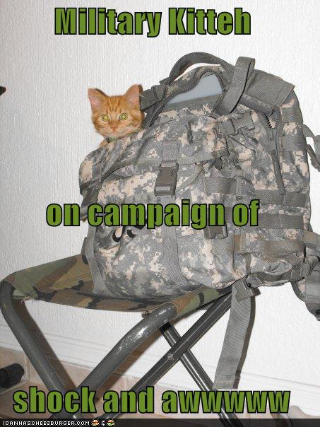 Funny Picture Clip: Top Funniest captions for a military ...