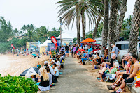 2 Crowd Vans World Cup foto WSL Ed Sloane