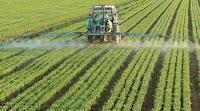 Herbicidas de Monsanto dañan el ADN