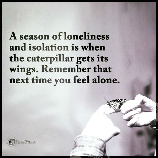 A Season Of Loneliness And Isolation Is When The Caterpillar Get Its