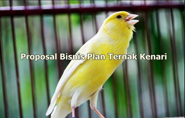 Perencanaan Bisnis Burung kenari
