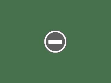 2019年九州中國四國紅葉情報+預測(2019年6月更新)
