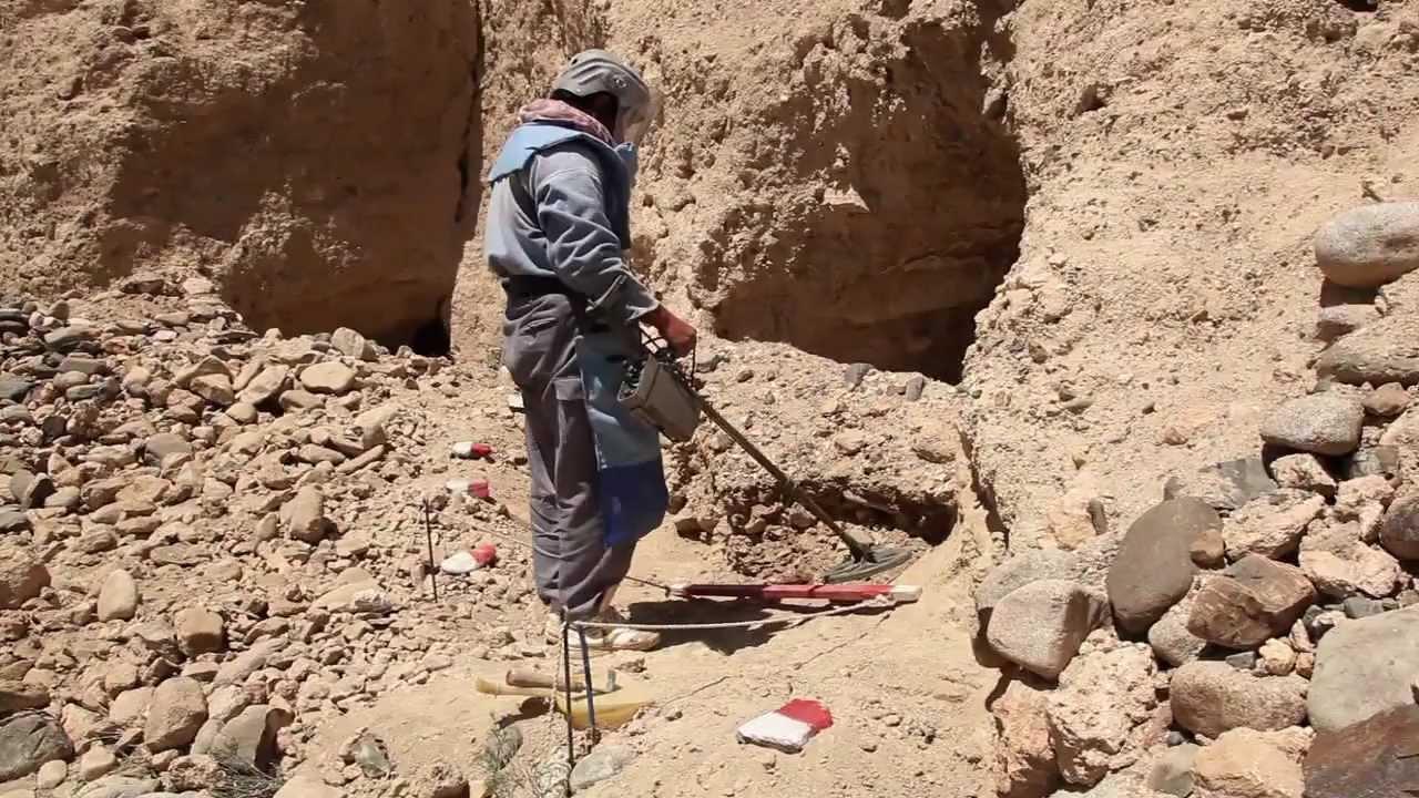 Image result for Penghilang Ranjau Darat