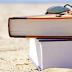 Top five de novelas para el verano