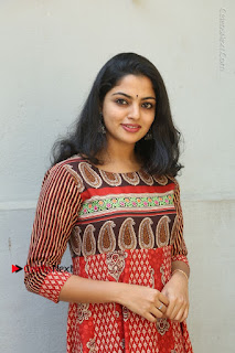 Telugu Actress Nikhila Vimal Latest Stills in Anarkali Dress  0064.JPG