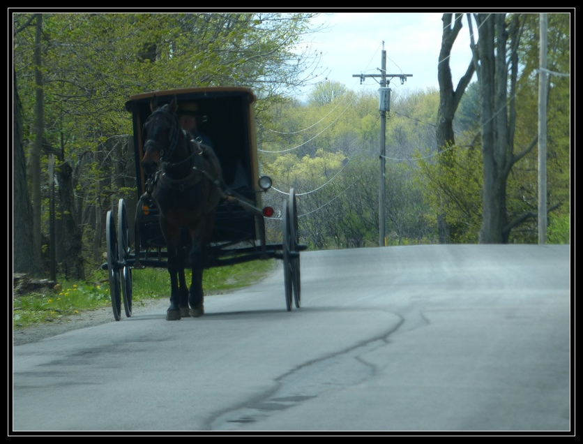 essay on amish religion History of the amish essay by randi112289, college many of their beliefs are the same as fundamentalists and other evangelical churches including baptism.