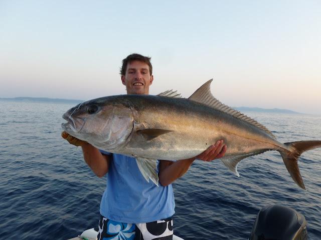pêche de la sériole, comment pêcher la sériole