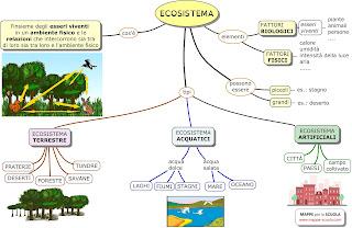 http://www.mappe-scuola.com/2012/06/lecosistema-la-comunita-biologica-e-il.html