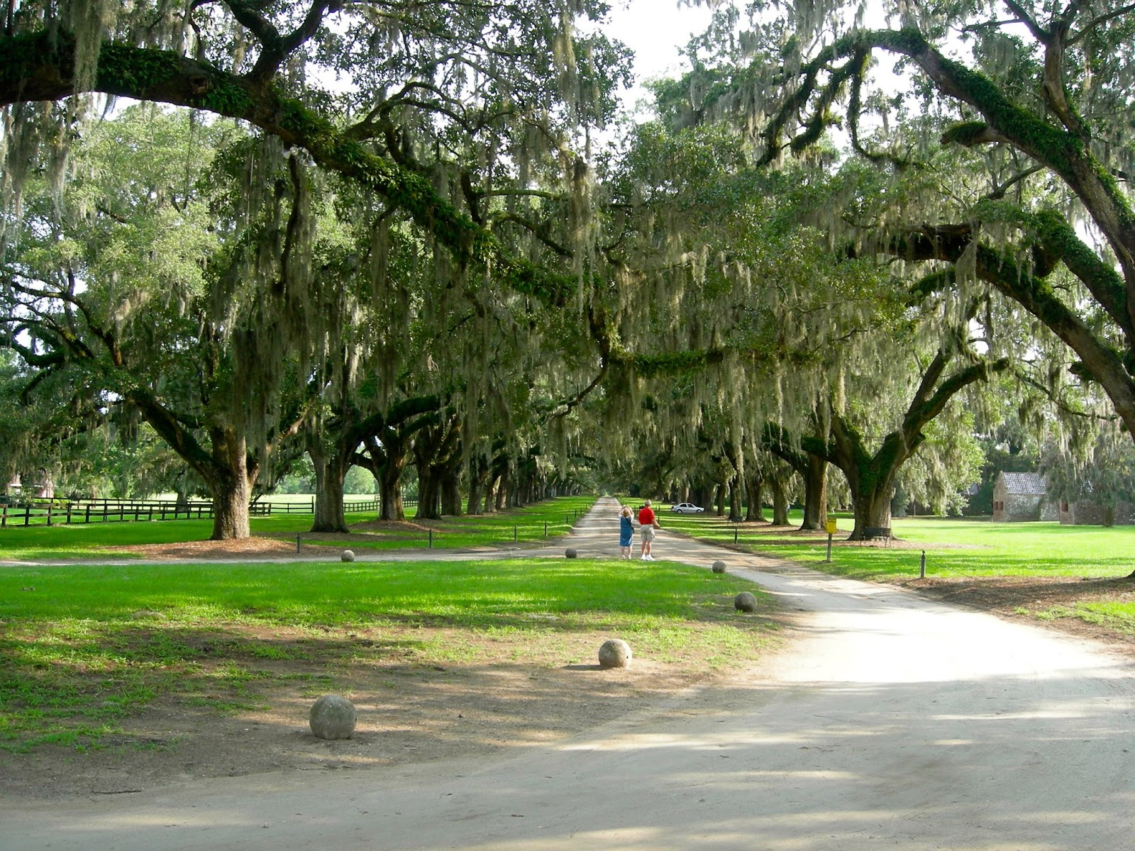 Boone Hall Plantation, Charleston, SC