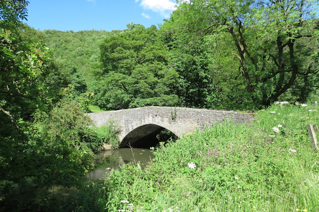 An ancient, arched stone bridge crossing the river - foreground left, an overgrown verge with wildflowers; background of trees.