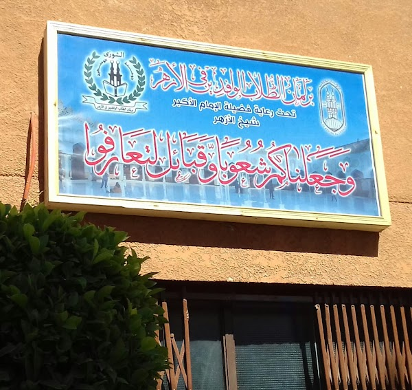 Menyingkap Tabir di Balik Instruksi Imam Akbar Syeikh Ahmad Thoyyib