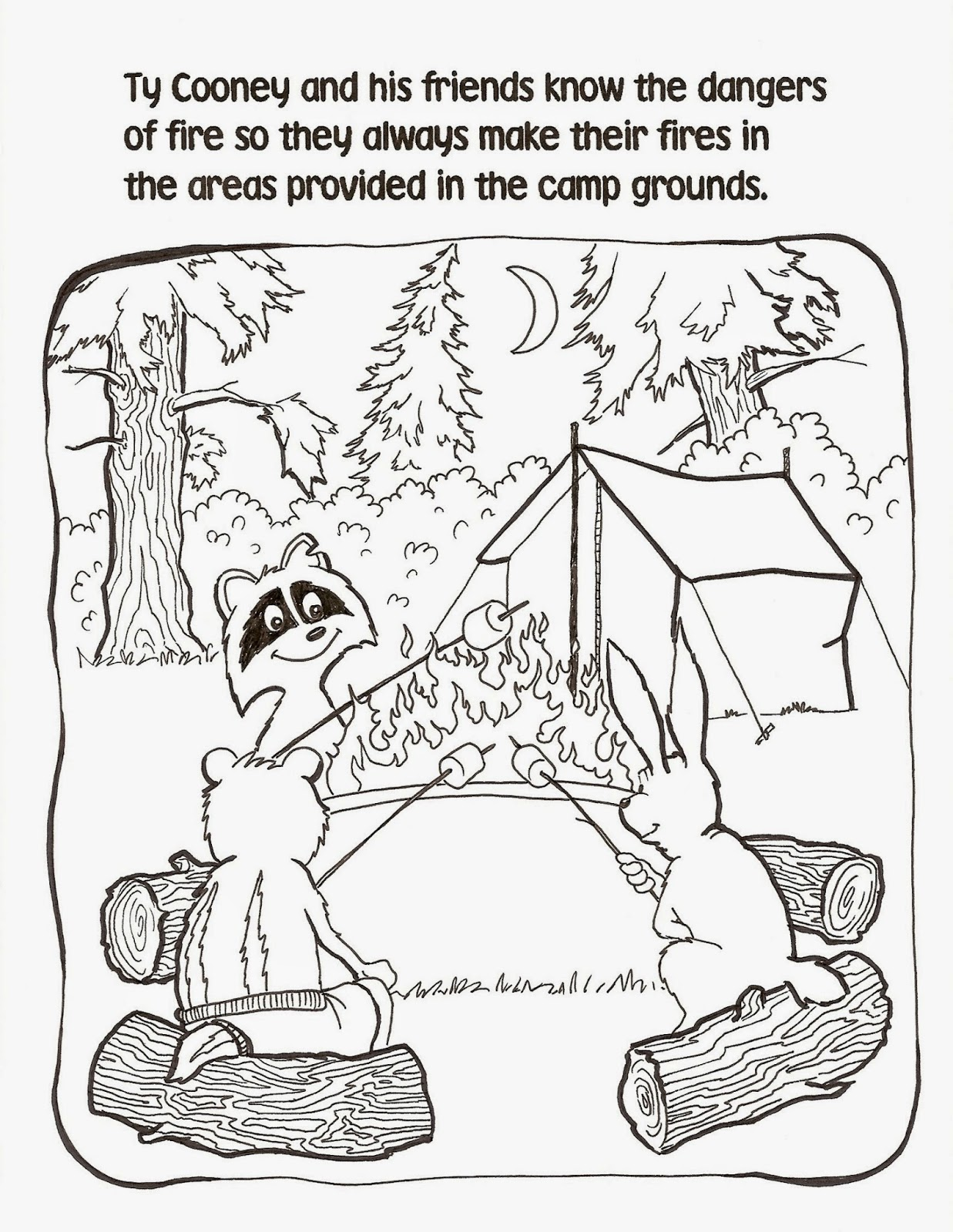 Emerson Villela Carvalho Jr M D Campfire Precautions
