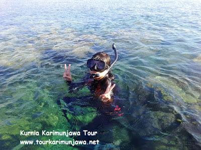 spot snorkeling di taka sendok karimunjawa