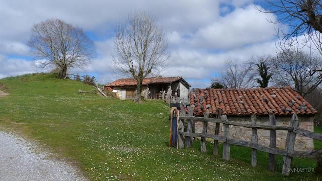 Collada Praduela - Piloña - Asturias