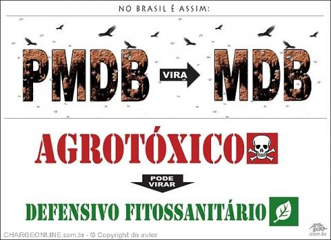 AUTO_amarildo2.jpg (480×348)