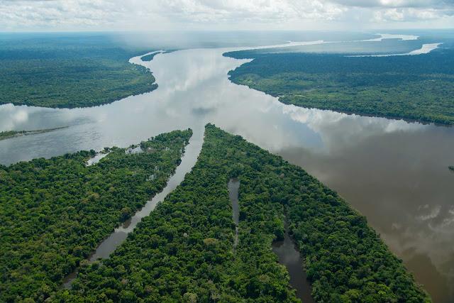 A mata com rios no meio onde os indígenas moram no Mato Grosso - Brasil