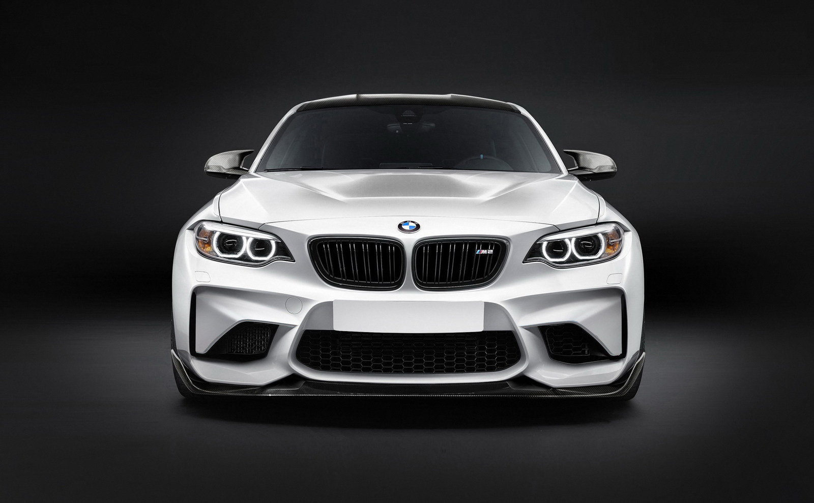 bmw-m2-gts-by-alpha-3%2B%25281%2529.jpg