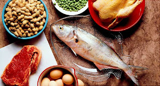 Jenis-jenis protein