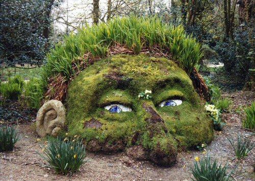 Gnome Garden: The Learning Landscape: Designing A Fairy Garden