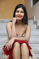 Rachana Smit in Red Deep neck Sleeveless Gown at Idem Deyyam music launch ~ Celebrities Exclusive Galleries 009.JPG