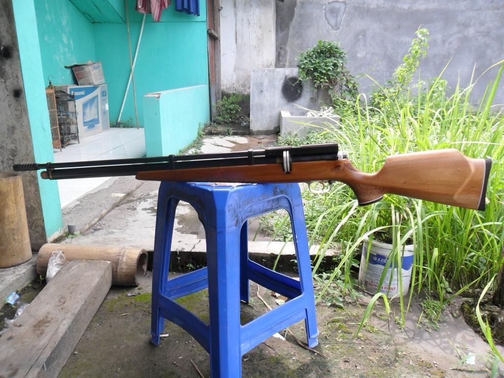 GUNS AND HOBBIES: SENAPAN PCP RAPID