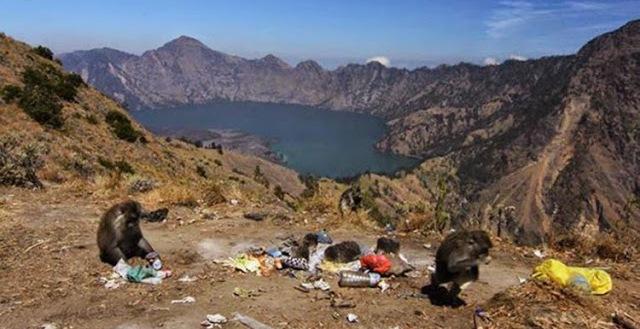 membuang sampah di atas gunung
