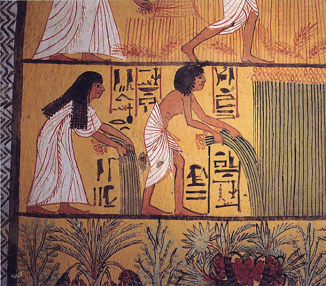 Sennedjem and Ti harvesting papyrus (Egyptian harvest)