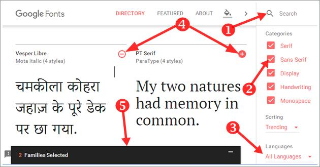 how to add custom fonts on your website in hindi