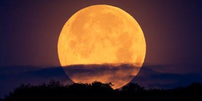 """""""Il diametro apparente della Luna sarà il 14% più grande di quello di una luna piena normale"""", ha spiegato Giovanna Ranotto dell'Unione Astrofili Italiana """"e il 30% più luminosa del normale. Questo perché avremo la luna piena quasi perfettamente in perigeo, ossia nel punto più vicino alla Terra"""".  In Italia si stanno organizzando tanti eventi per osservare la Superluna, come a Napoli dove il pubblico potrà entrare in via del tutto eccezionale all'Osservatorio Astronomico di Capodimonte.  Anche sui social network sono stati organizzati delle feste per celebrare la Superluna, come quello in Australia sulla spiaggia di Bronte dove i partecipanti alla """"Supermoon on the beach """" sono già 11mila.  Silvio Eugeni, presidente del Centro Nazionale Astroricercatori indipendenti spiega:      """"Ci saranno le condizioni ideali per foto notturne, il mio consiglio è quello di cercare monumenti archeologici.  Vicino alla luna ci saranno anche le Pleiadi, le cosiddette 7 sorelle che renderanno le foto ancora piu' belle"""".  Fonte: http://www.tgcom24.mediaset.it"""