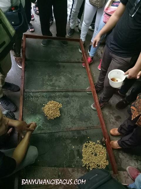Metode pengeringan dan penjemuran kopi para-para.