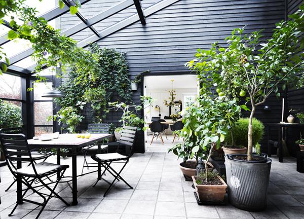 Ogród Zimowy Na Tarasie Codziennie Szczypta Designu