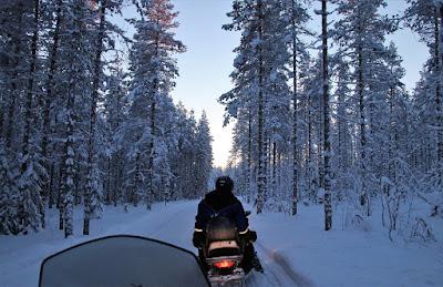 इस जंगल को काला वन क्यों कहा जाता हे ? | Facts about Black Forest