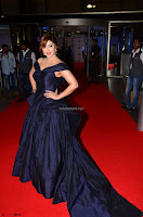 Payal Ghosh aka Harika in Dark Blue Deep Neck Sleeveless Gown at 64th Jio Filmfare Awards South 2017 ~  Exclusive 033.JPG