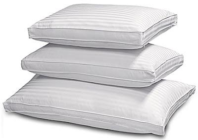 The Savvy Shopper Fine Goose Down Pillows