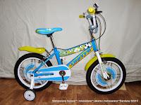 Sepeda Anak United Soccer Argentina La Albiceleste 16 Inci
