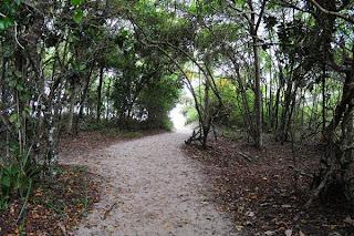 trilha até lopes mendes, lopes mendes, ilha grande, ano novo, praia, paradisiaca, caminho, quanto tempo, ondas, surf, férias, verão