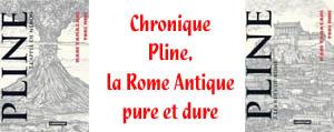 http://blog.mangaconseil.com/2017/01/chronique-pline-la-rome-antique-pure-et.html