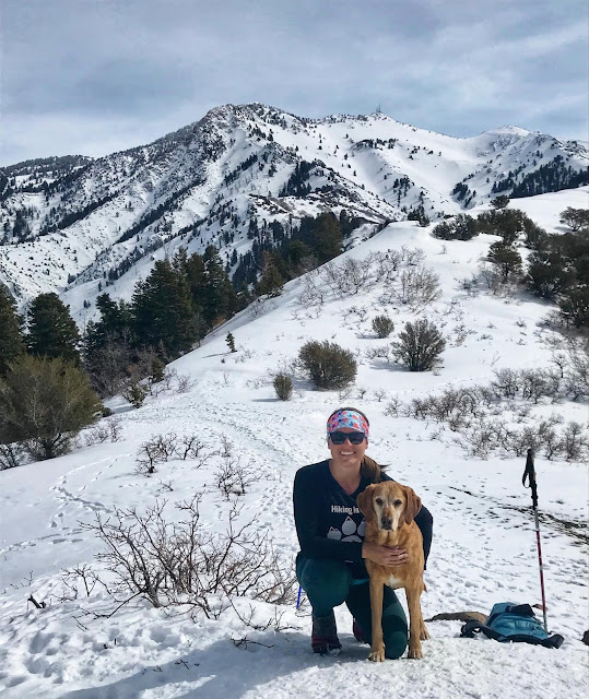 Hiking to Malan's Peak, Ogden, Utah, Hiking in Utah with Dogs
