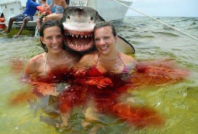 Lustige Urlaubs Fotos - Frauen mit Hai am Meer - Lächeln
