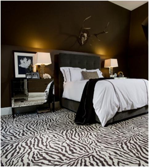 Zebra Room Decor: ZEBRA DECORATION FOR DORMITORIES