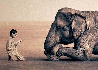 funny quirky joke short story boy reading to an elephant