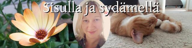 http://sisullajasydamella.blogspot.fi/