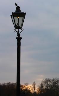 prise de vue dans Hyde Park, Londres