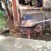 [Κόσμος]Μαγειρεύουν ..ζωντανό σκυλί ..και το διασκεδάζουν [βίντεο]