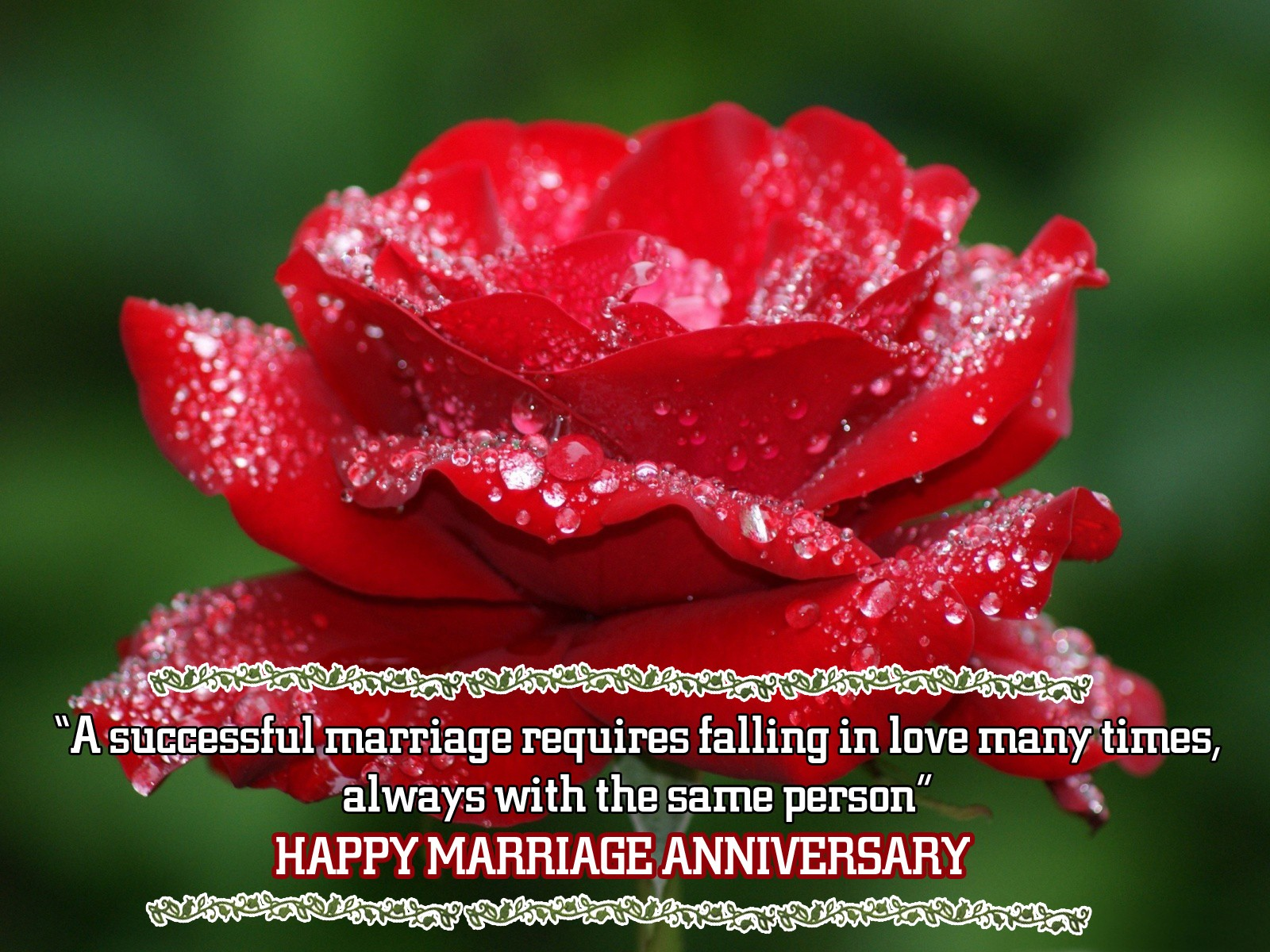 Happy Marriage Anniversary Quotes Happy Anniversary Wishes Messages With Sweet Pictures For Sister