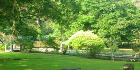 Kebun Raya Bogor kebun raya bogor angker kebun raya bogor 2015 kebun raya bogor didirikan oleh