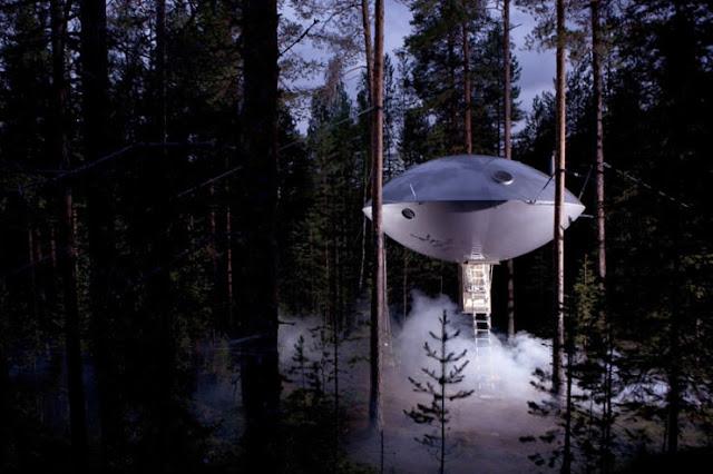 شاهد صور 29 منزل فوق الأشجار سيعجبك أن تعيش بها  Top-29-Treehouses-UFO-740x493
