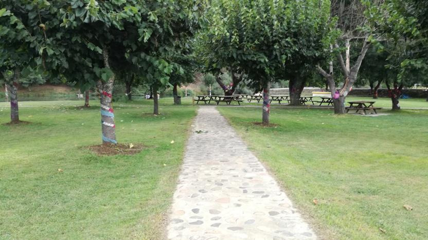 Caminho em pedra