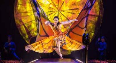 Cirque Du Soleil Luzia via www.gabyramos.com