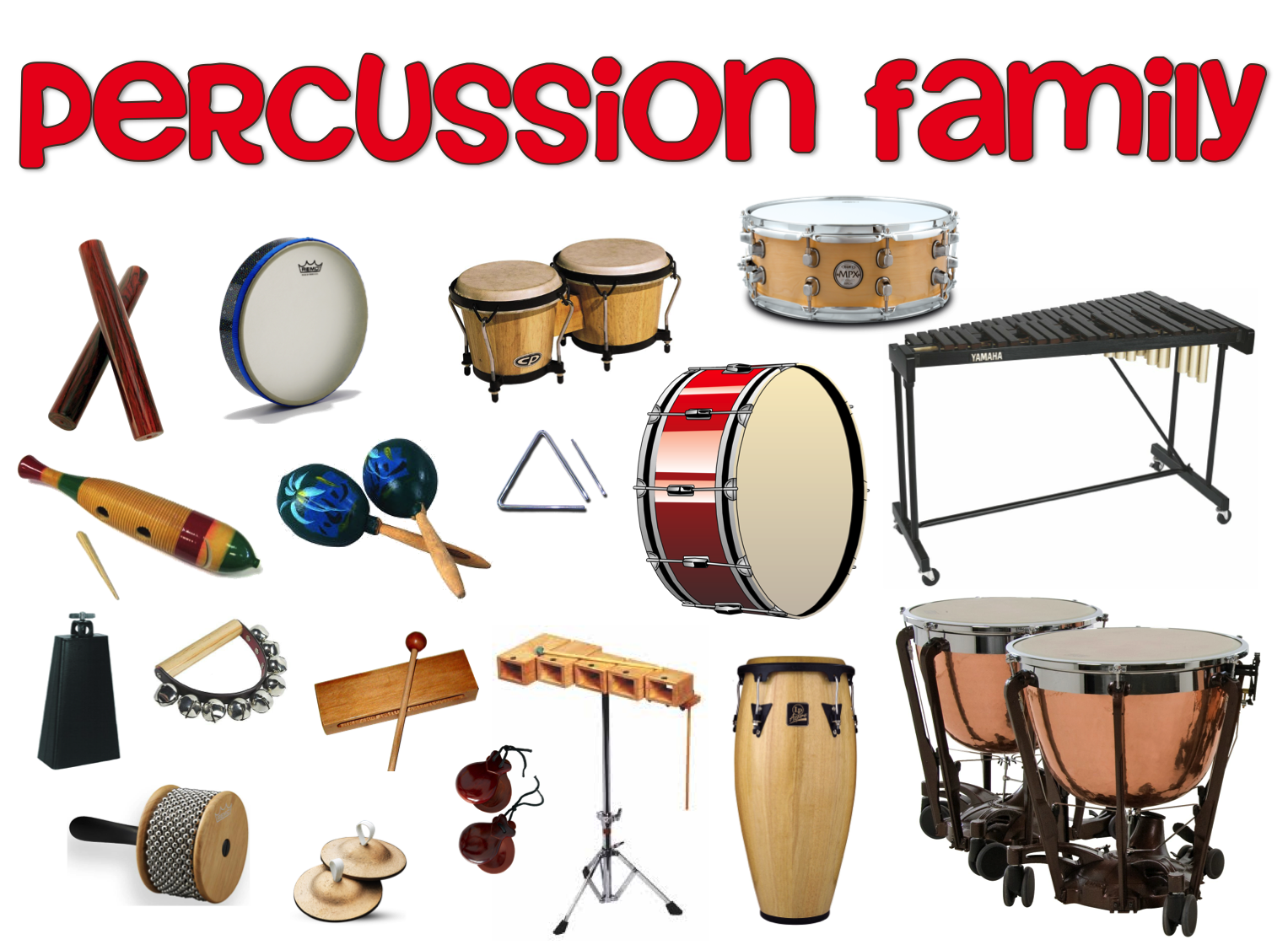 Worksheet Types Of Instruments click on types of instruments percussion 3